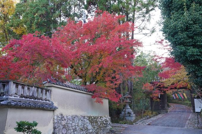 京都_紅葉_2020_赤山禅院 No2