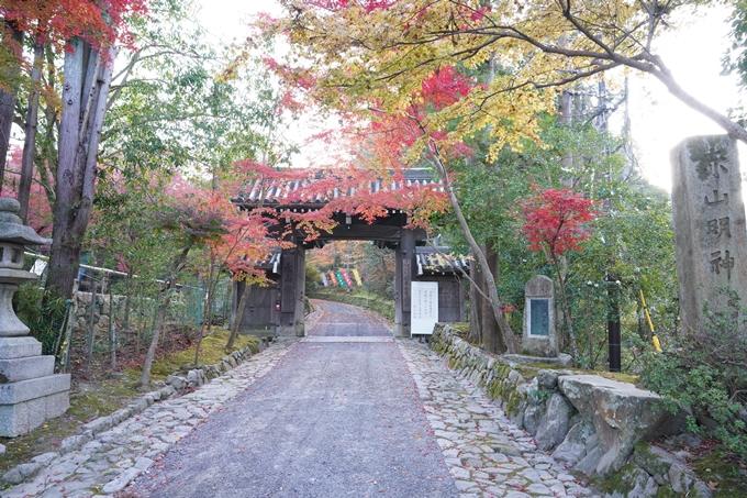 京都_紅葉_2020_赤山禅院 No3