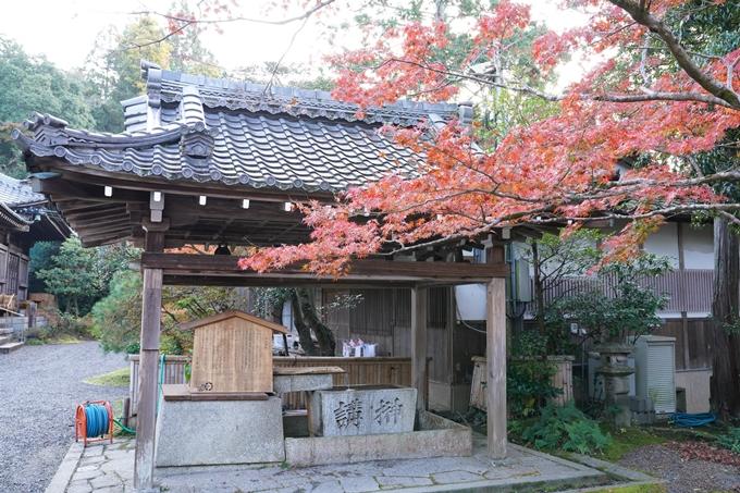 京都_紅葉_2020_赤山禅院 No6
