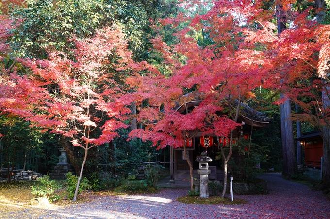 京都_紅葉_2020_赤山禅院 No17