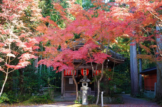 京都_紅葉_2020_赤山禅院 No23