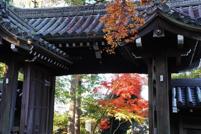 京都_紅葉_2020_赤山禅院 No31