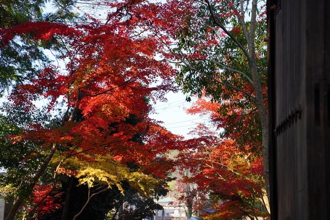 京都_紅葉_2020_赤山禅院 No32
