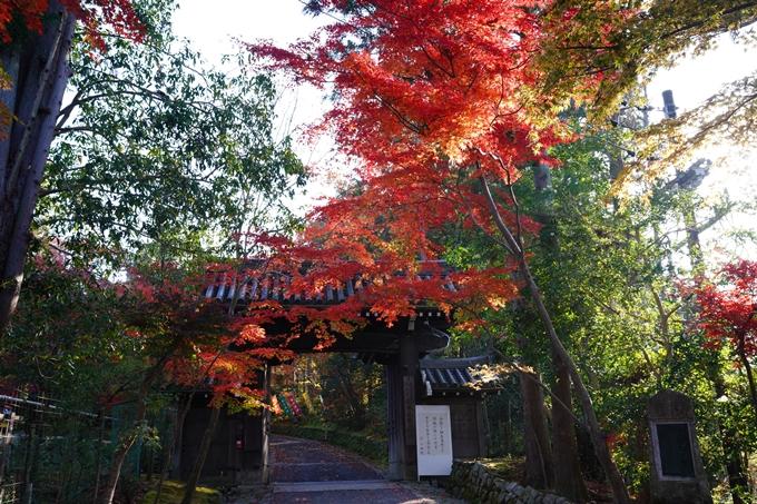 京都_紅葉_2020_赤山禅院 No34