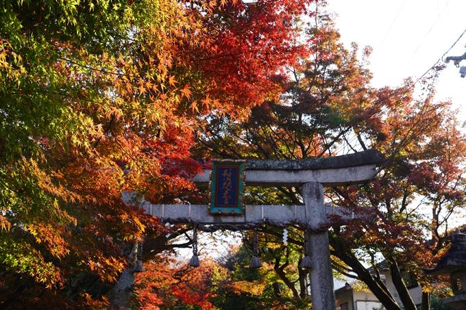 京都_紅葉_2020_鷺森神社 No13