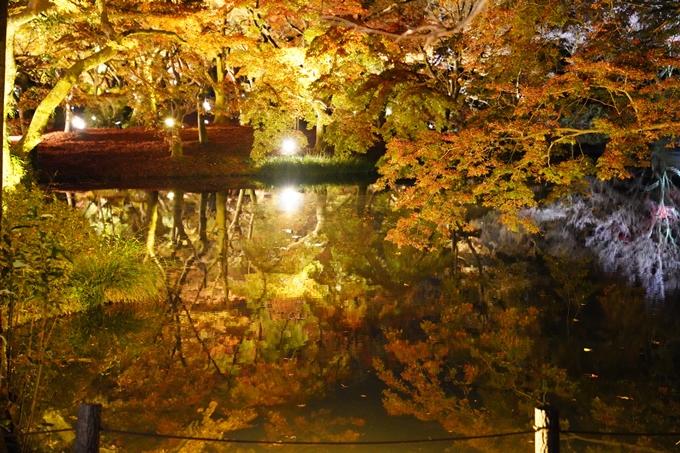 京都_紅葉_2020_植物園 No10