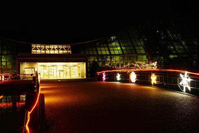 京都_紅葉_2020_植物園 No22
