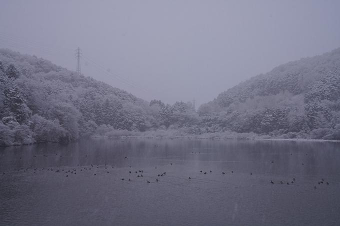 亀岡市内_雪景色_2020 No8
