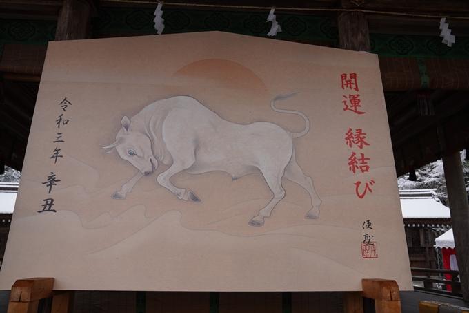 亀岡市内_雪景色_2020 No16