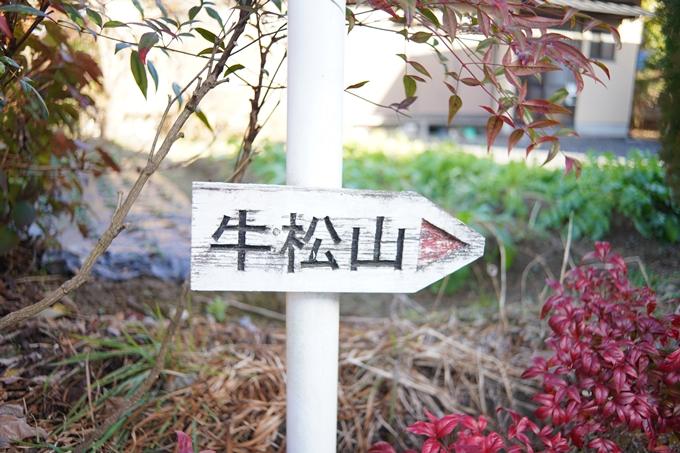 麒麟がくる_牛松山 No6
