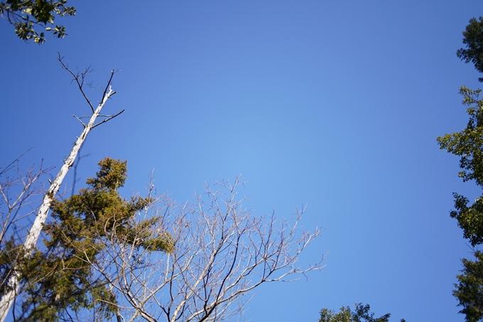 麒麟がくる_牛松山 No29