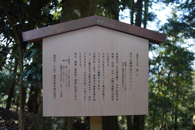 麒麟がくる_牛松山 No69