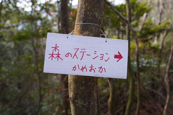 麒麟がくる_八木城跡 No34