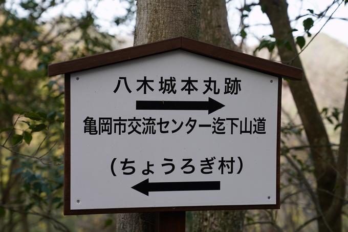 麒麟がくる_八木城跡 No41
