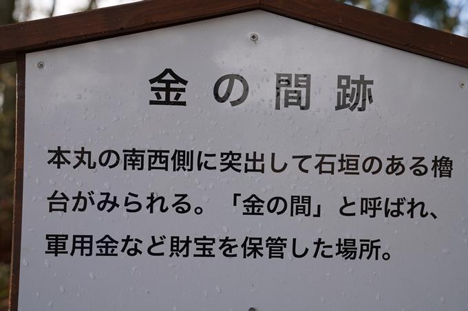 麒麟がくる_八木城跡 No59