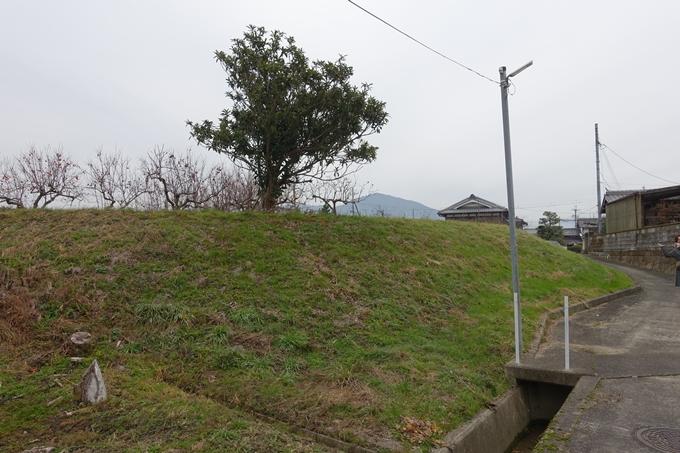 麒麟がくる_並河城跡 No18