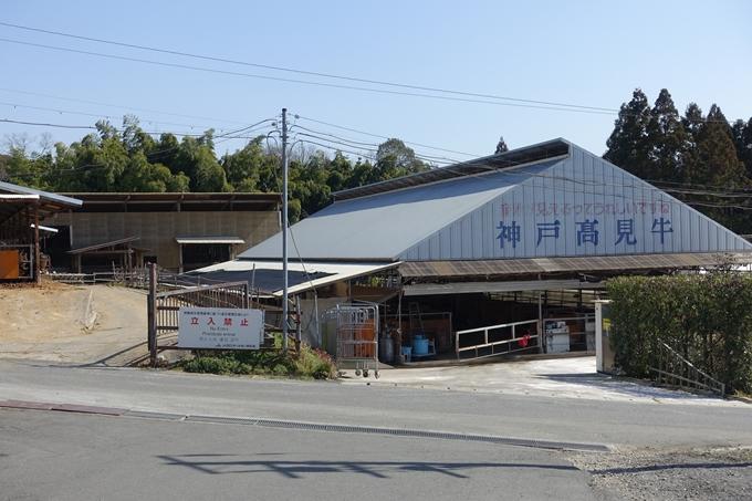 麒麟がくる_丹波_黒井城跡 No111