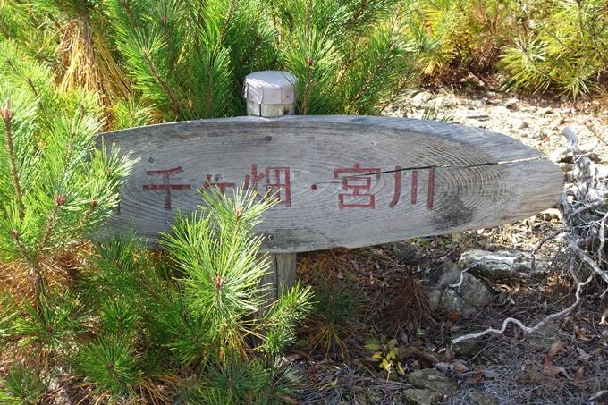 めざそう半国山 No89