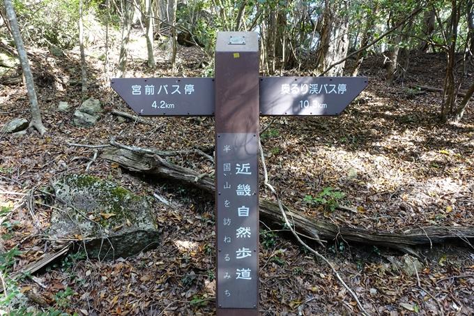 めざそう半国山 No109