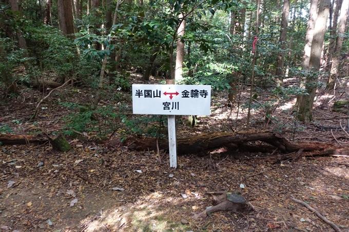 めざそう半国山 No117