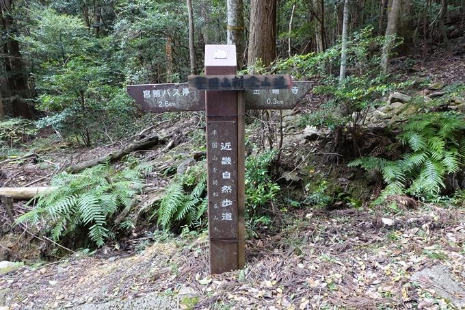 めざそう半国山 No121