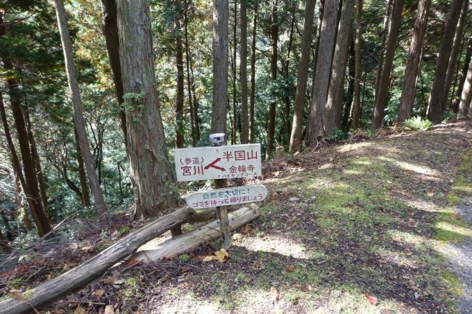 めざそう半国山 No123