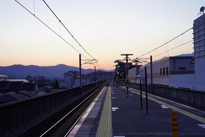桜_2021_15 大豊神社 No20