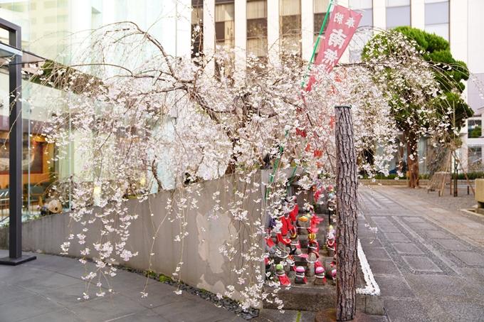 桜_2021_08 六角堂 No12