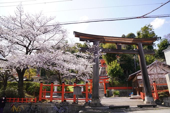 桜_2021_17 建勲神社 No2