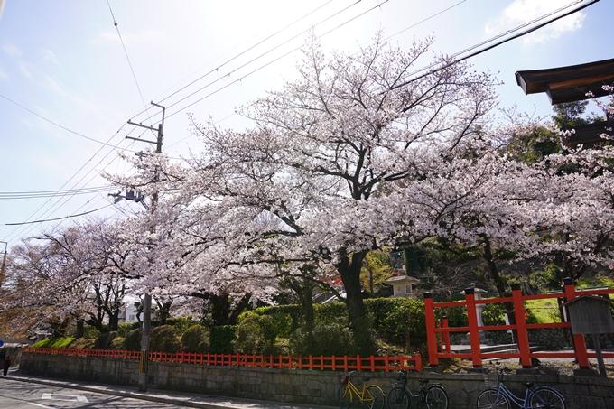 桜_2021_17 建勲神社 No3