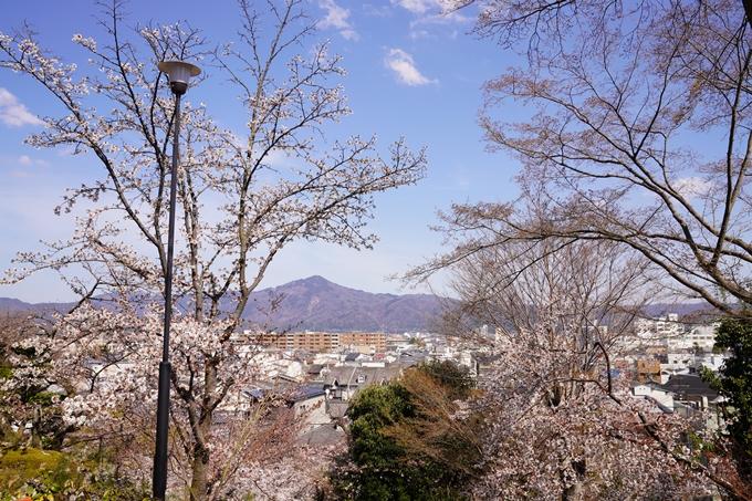 桜_2021_17 建勲神社 No8
