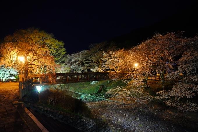 桜_2021_23 七谷川_ライトアップ No4