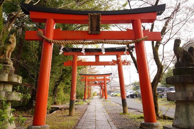 桜_2021_41 竹中稲荷神社 No2