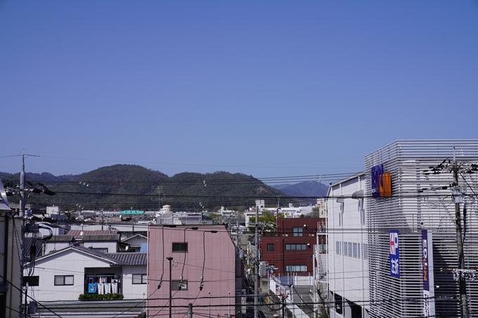 桜_2021_43 JR保津峡駅 No2