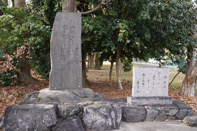 天穂日命神社 No9
