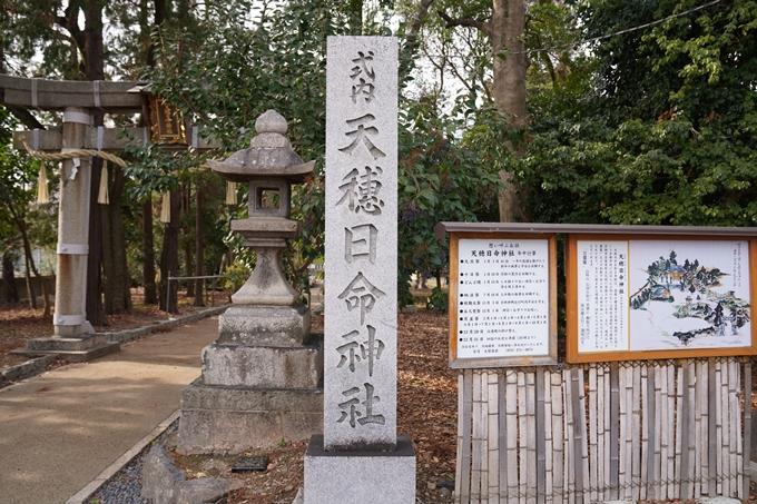 天穂日命神社 No10