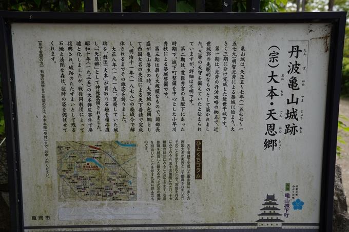 大本教本部_カキツバタ No2