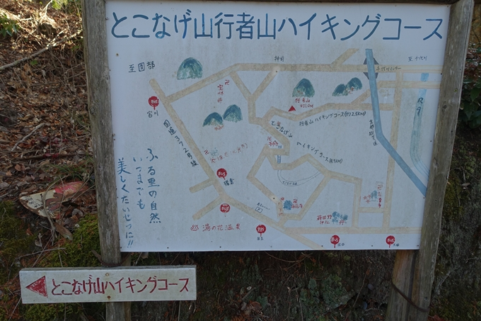 瑞巌寺 廃寺跡 No12