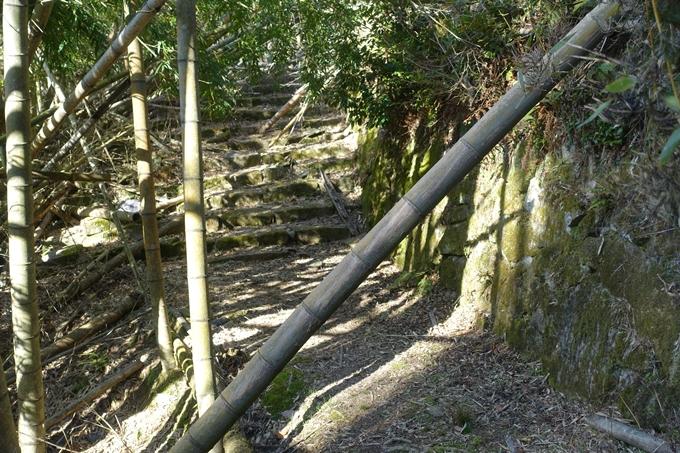 瑞巌寺 廃寺跡 No43