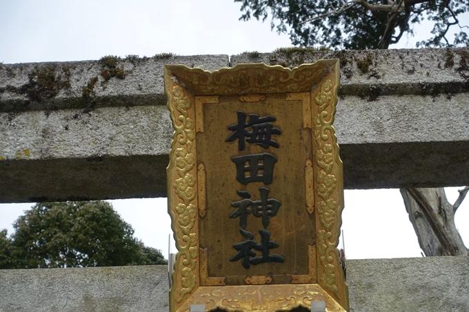 梅田神社_亀岡市 No4