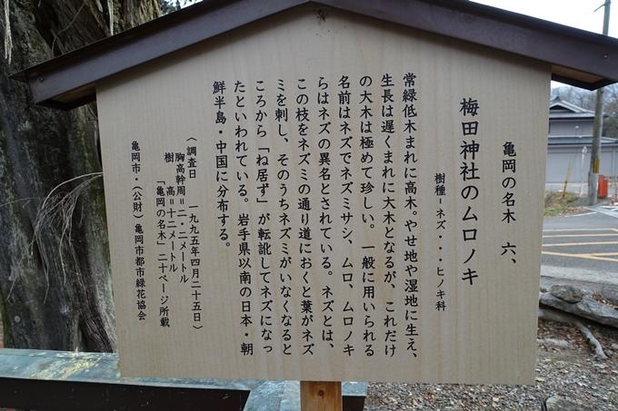 梅田神社_亀岡市 No6