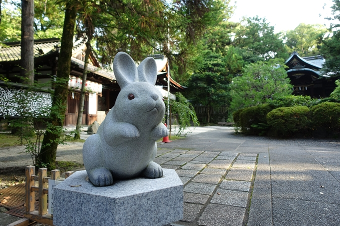 夏越の大祓_岡崎神社_2021 No6