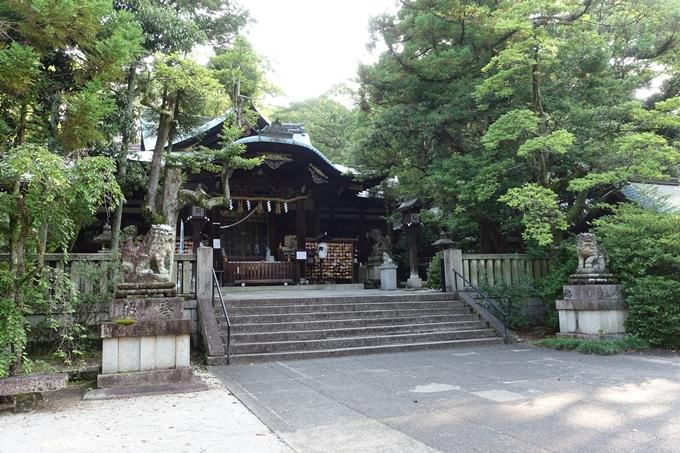 夏越の大祓_岡崎神社_2021 No7