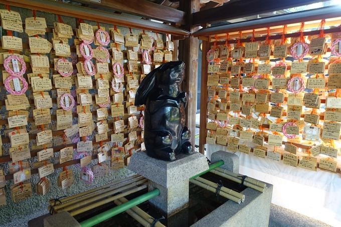 夏越の大祓_岡崎神社_2021 No16