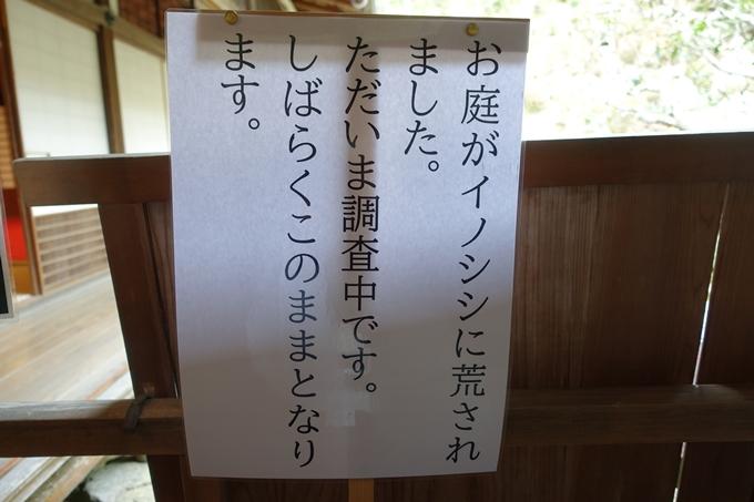 柳谷観音 No19