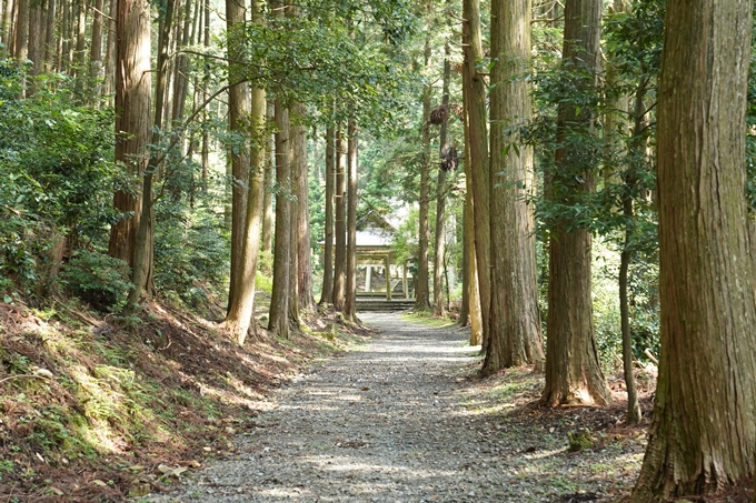 松尾神社_西別院 No10