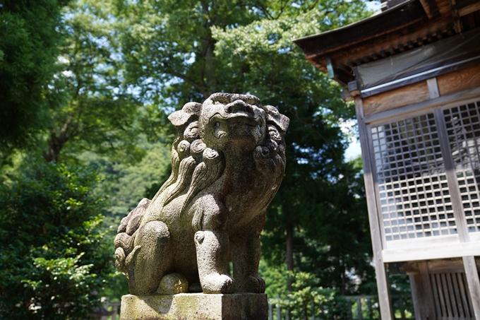 伊夫岐神社 No17