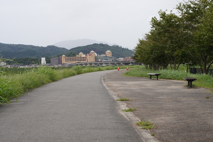 保津小橋 No43