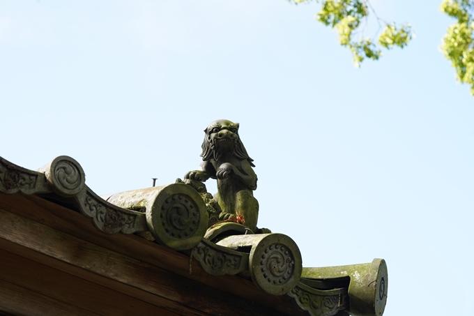 丹波国分寺跡_2021 No8