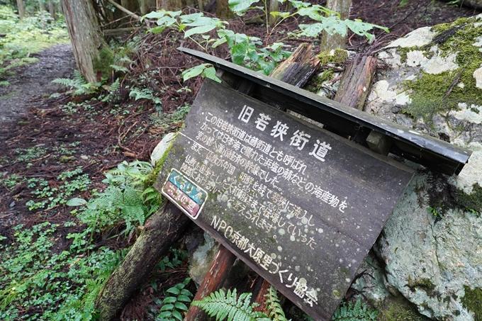 京都一周トレイル_北山編_2021 No9